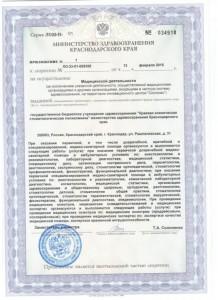 Приложение к лицензии на осуществление медицинской деятельности, стр.1